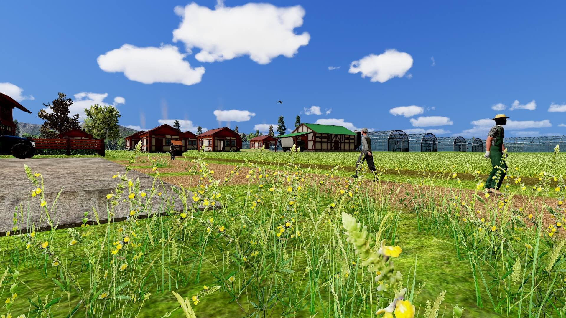 farm manager-Basic26