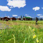 farm-manager-Basic28-150x150 【Railway Empire 攻略ブログ】 シナリオモード 北西部1910年 ロッキー山脈採鉱 Railway Empire(レイルウェイ エンパイア) 鉄道を繋ぎ街を発展させる経営シミュレーションゲーム